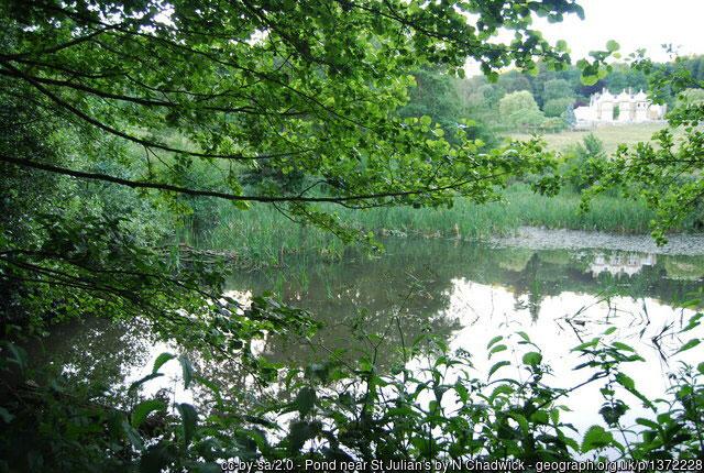 Pond near St Julians
